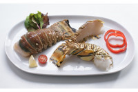 Langusten Schwänze Rock Lobster Tails 10/12oz