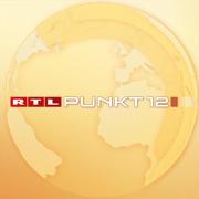 punkt-12-logo