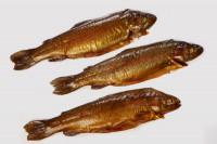 Lachsforelle geräuchert