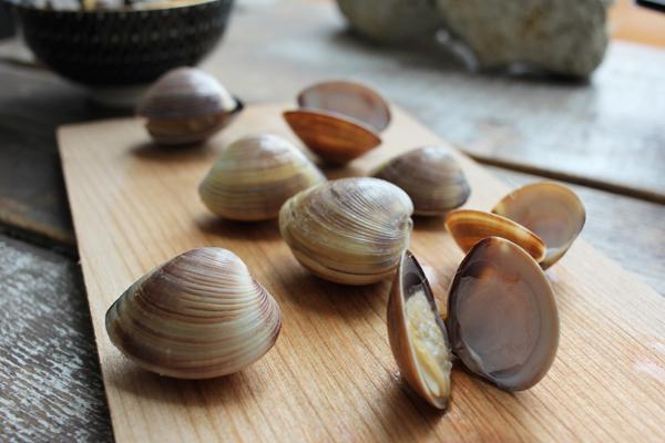 Venusmuscheln - braun, in Schale