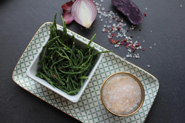 Salicorne (Queller) - frisch
