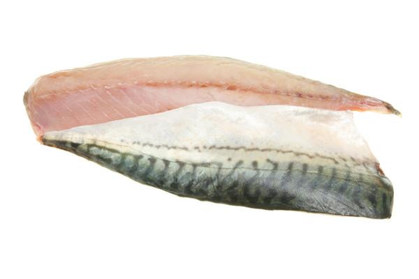 frisches Makrelenfilet gesalzen