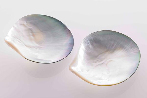 Caviar Perlmuttschale